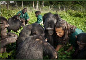 Ngamba Excursion Tours Uganda